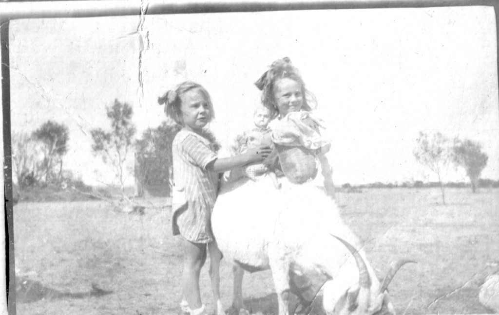 children_goats