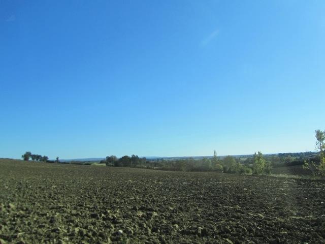 20111021-190040.jpg